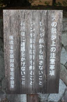 IMG_3446s.jpg